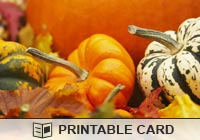 Thanksgiving Gourds Ecard