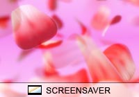Nature Falling Petals Screen Saver